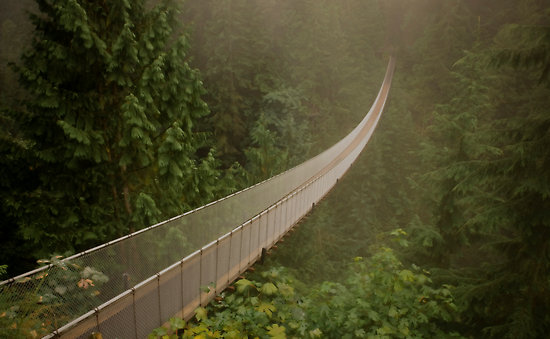 http://www.weirdlyodd.com/wp-content/uploads/2010/12/Capilano-Suspension-Bridge-British-Columbia-%E2%80%93-Canada-1.jpg