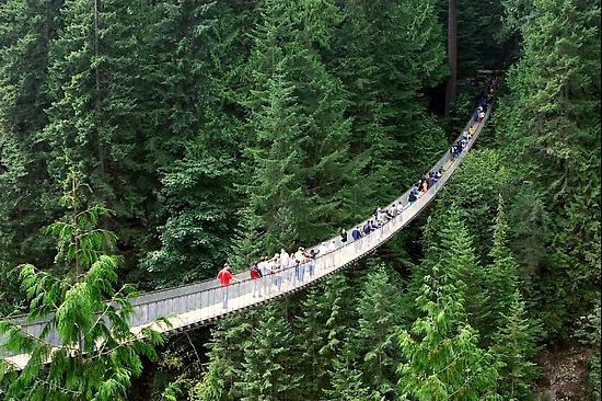 http://www.weirdlyodd.com/wp-content/uploads/2010/12/Capilano-Suspension-Bridge-British-Columbia-%E2%80%93-Canada2.jpeg
