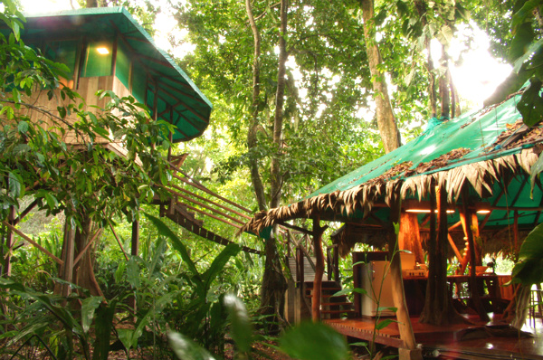 Top 10 unique hotels for tourists for Tree house for sale costa rica