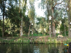 1024px-Dolls_hung_in_Santana_Barrera's_chinampa_in_Xochimilco