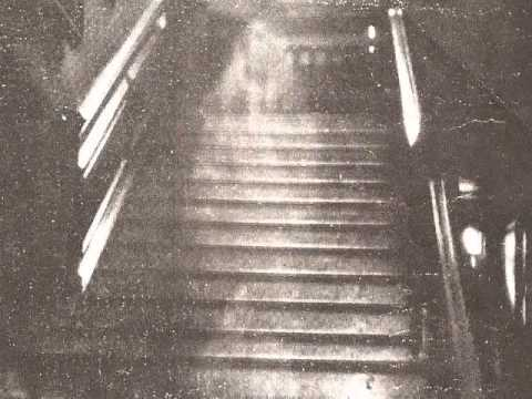 The brown lady of the Raynham hall