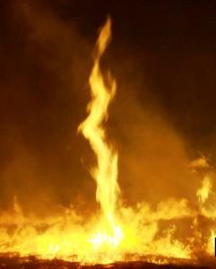 Fire_whirl_(FWS)_crop