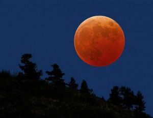 Orange-Moon-6