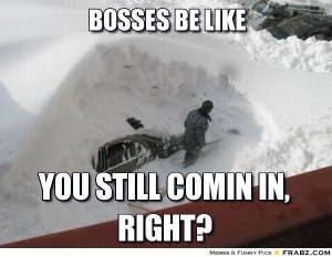 Funny Memes For Snow : Funny winter memes