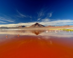 The Most Bizarre Lakes Known to Man