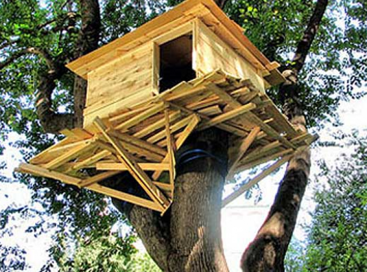 Five Tree Houses from Around the World That You Could Live in