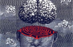 The Most Amazing Unsolved Mysteries of the Human Brain