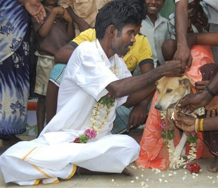 The Most Weird People Who Married Animals